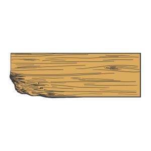 Illustration of wood rot