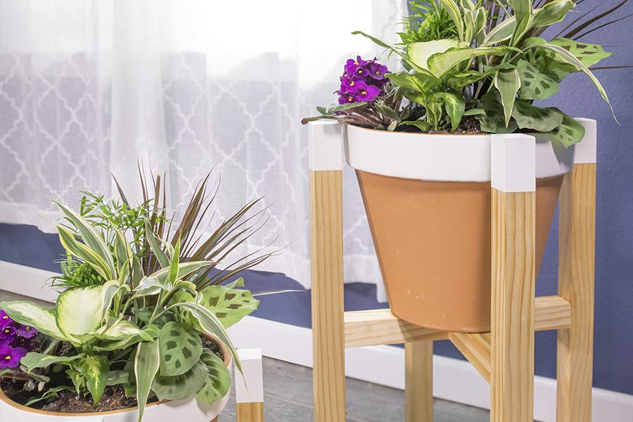 plant-stand-02