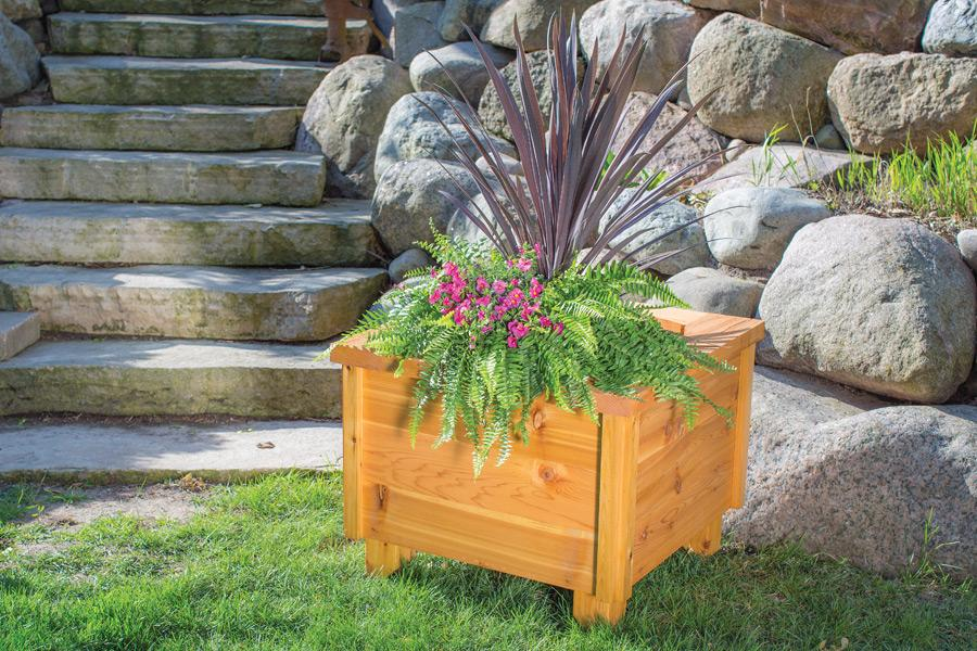 cedar-planter-box-pic-1