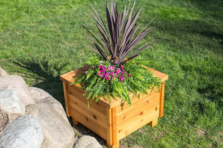 cedar-planter-box-pic-2