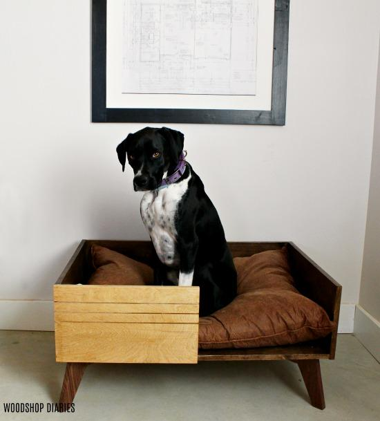 diy-large-modern-dog-bed-small