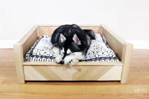 DIY Chevron Wooden Dog Bed