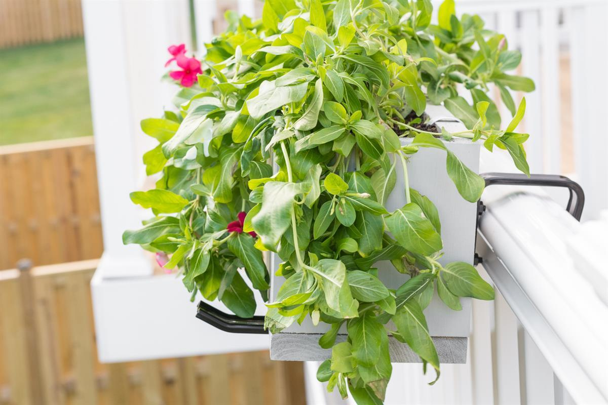 deck-railing-planter-box-3