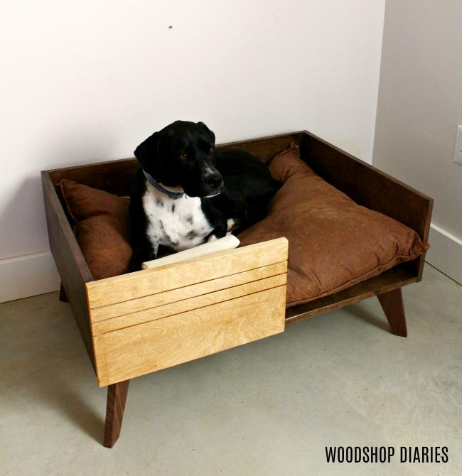 lucy-lying-in-new-diy-dog-bed-for-large-dog-small