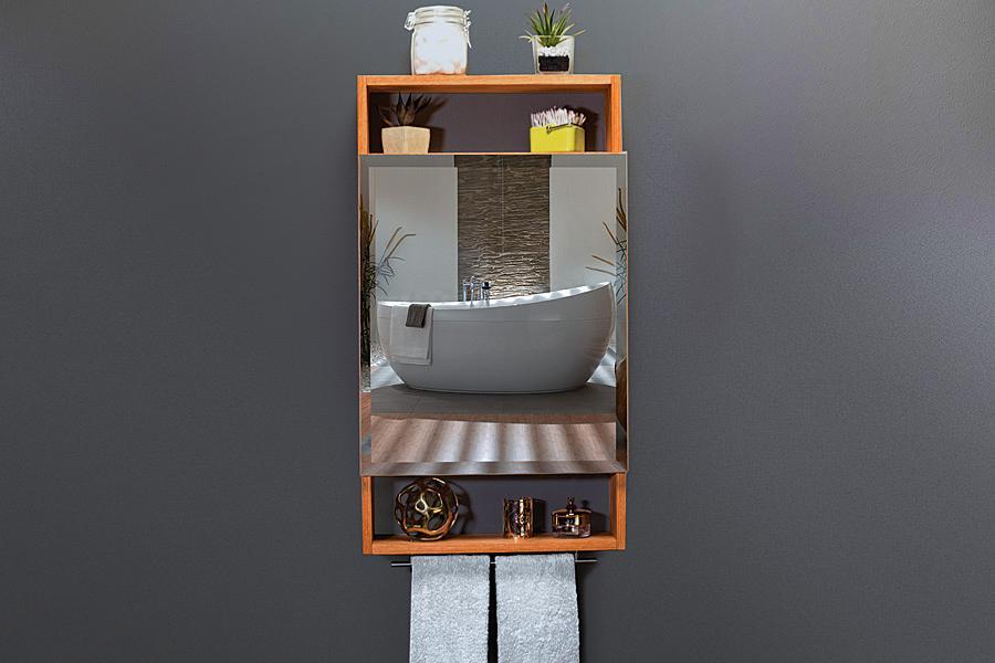 medicine-cabinet-pic-1