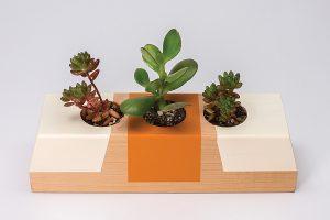 Succulent Tabletop Planter