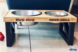 Build a Modern Doggie Feeding Station