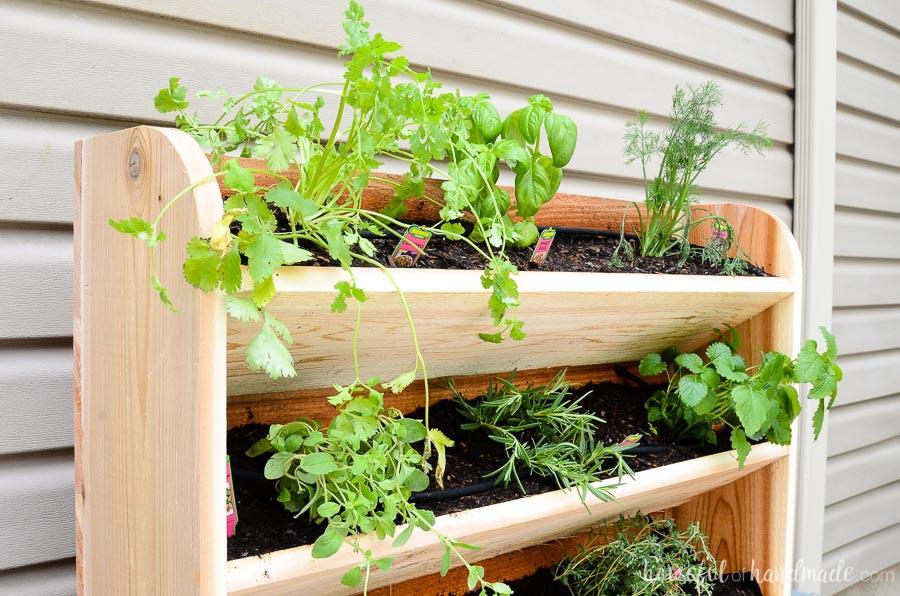 diy-vertical-garden-with-drip-watering-system-1