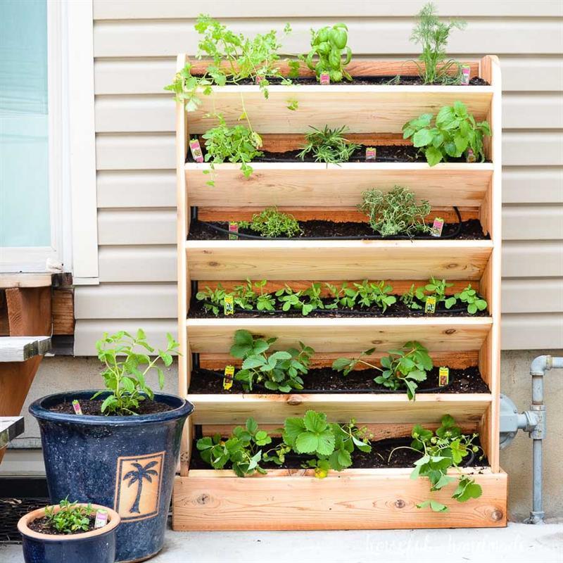 diy-vertical-garden-with-drip-watering-system-3