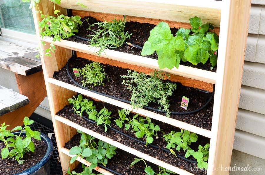 diy-vertical-garden-with-drip-watering-system-6