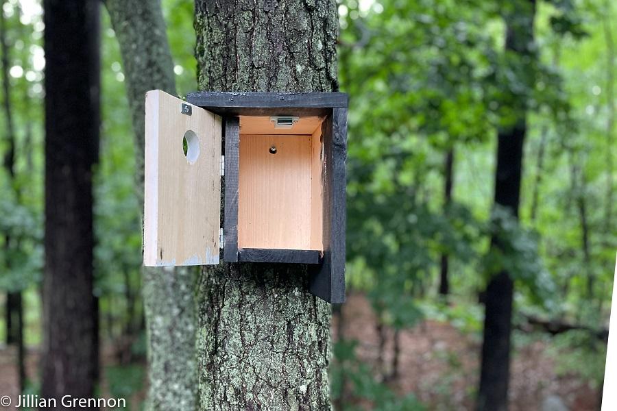 birdhouse-step-9a